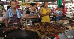 yulin-dog-festival-2017